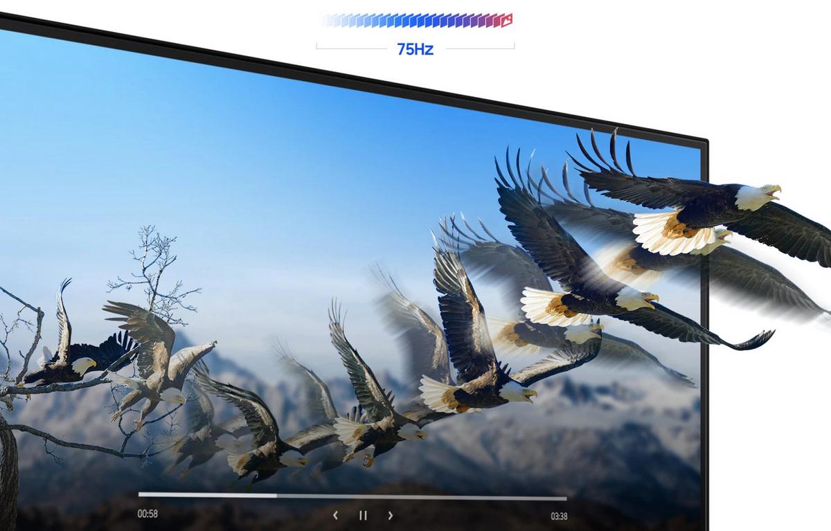 Màn hình Samsung LF24T370FWEXXV 23.8Inch 75Hz IPS