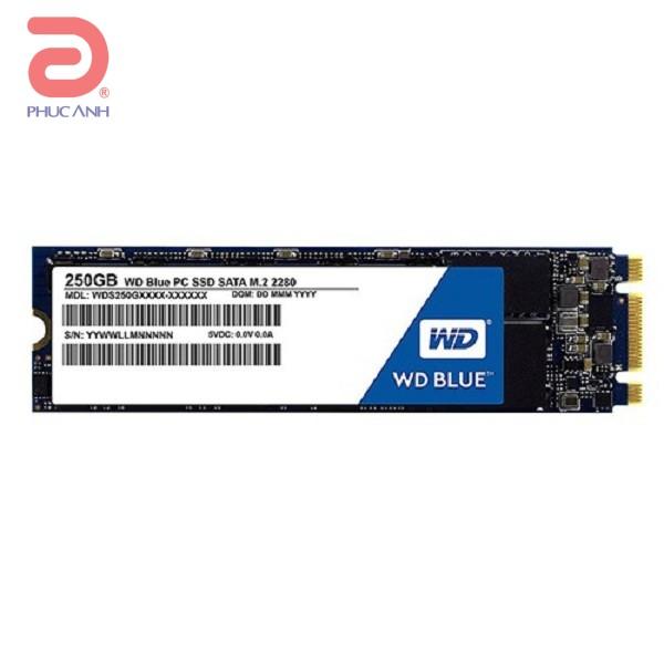 Ổ SSD Western Blue 250Gb M2.2280 (đọc: 540MB/s /ghi: 500MB/s)