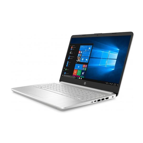 Laptop HP 14s-dk0117AU 8TS51PA