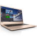 Laptop Lenovo IdeaPad 710S 13ISK-80SW00B7VN (Gold)